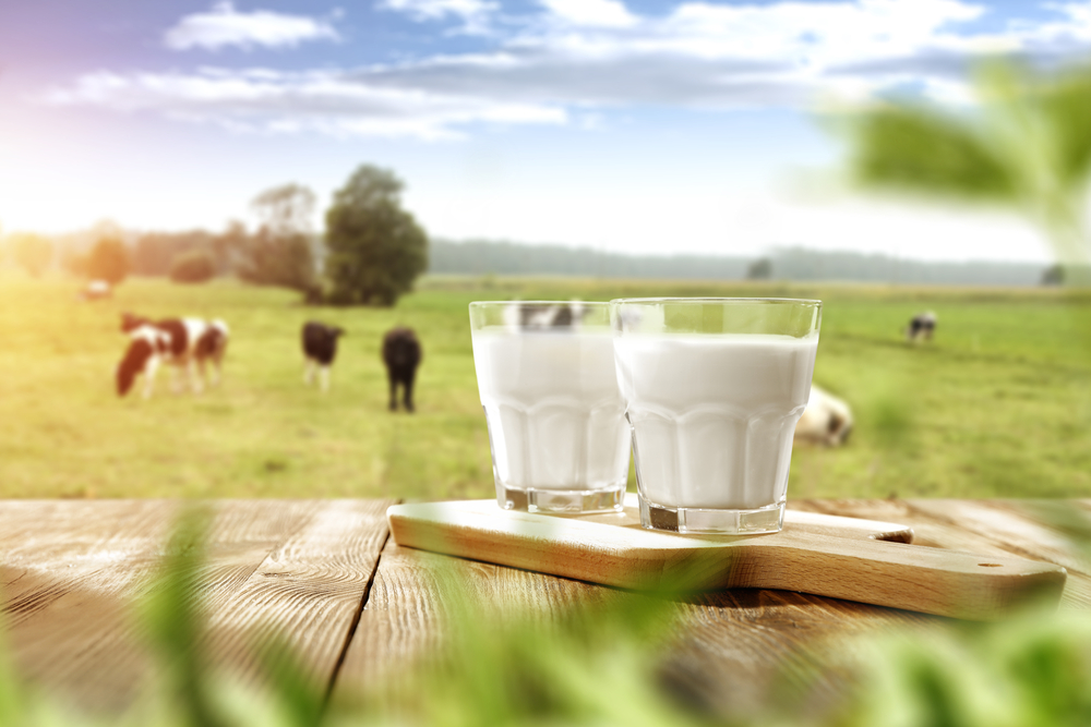 Countryside with glasses of fresh milk.