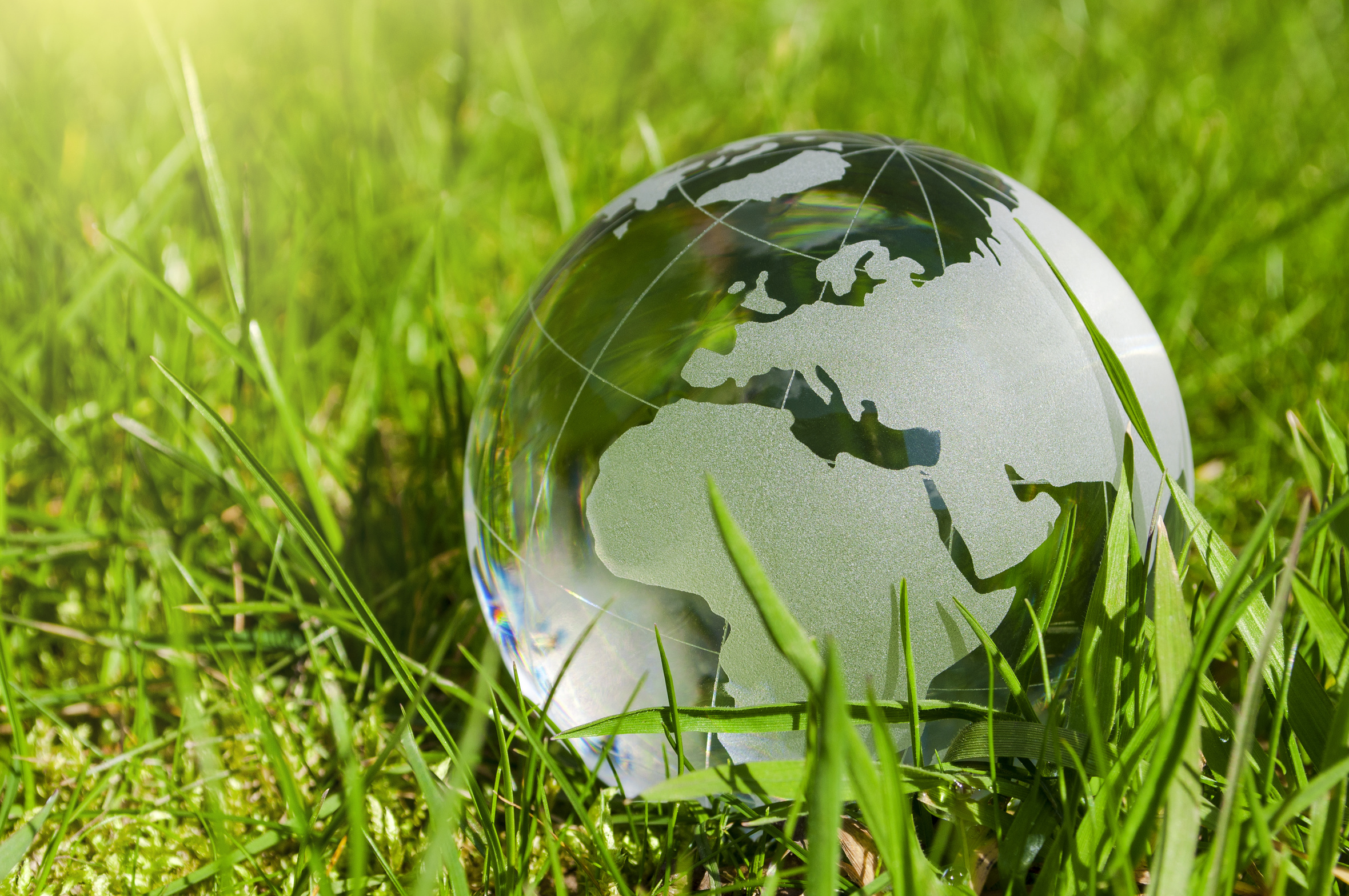Globe in the grass to signify environmentally friendly actions